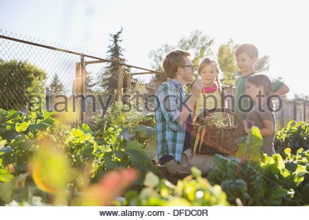 Teacher showing harvested vegetables to kids in community garden - Stock Photo