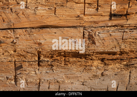 Very Old Wood Wall Texture Background