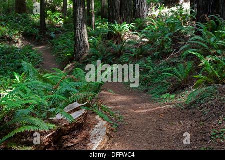 4670 besten Bildern zu California Highlights auf Pinterest