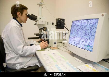 Microscopy and cells image, Laboratory of Pathological anatomy, Departamento de Producción y Sanidad Animal, Neiker - Stock Photo