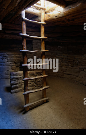 Ladder in a room of the Anasazi cliff dwelling Spruce Tree House, Echo House, Mesa Verde National Park, Colorado, - Stock Photo