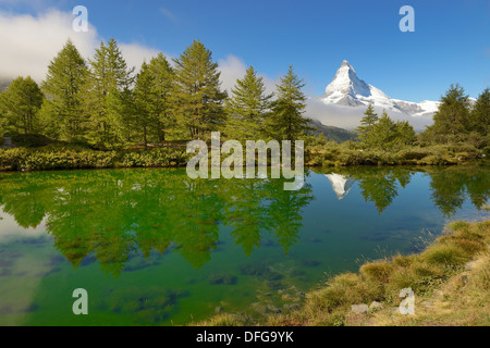 Larches (Larix) at Lake Grindjisee, in front of the Matterhorn, Valais Alps, Canton of Valais, Switzerland - Stock Photo