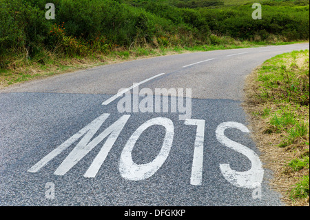 Slow sign on bend in road, Cornwall UK Credit: David Levenson - Stock Photo