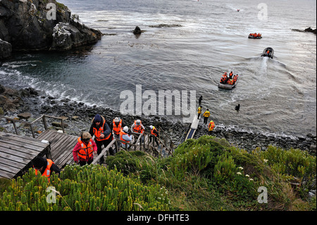 passengers of the cruise ship Stella Australis Cruceros Australis compagny landing on the Horn island, Tierra del - Stock Photo