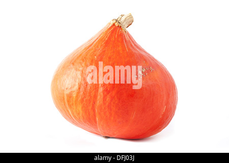 Orange Hokkaido Pumpkin (Red kuri squash) - Stock Photo