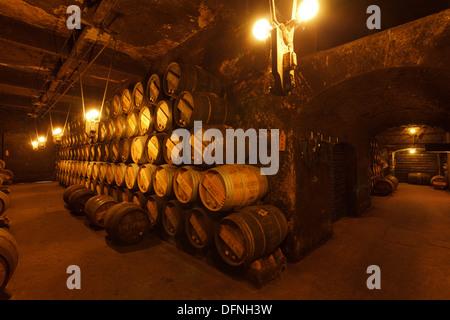 cellar, Bodega R Lopez de Heredia, Vina Tondonia, winery, Camino Vasco del interior, Way of Saint James, Camino - Stock Photo