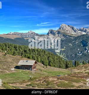 Alpine cabin and dairy cows on a pasture - Stock Photo