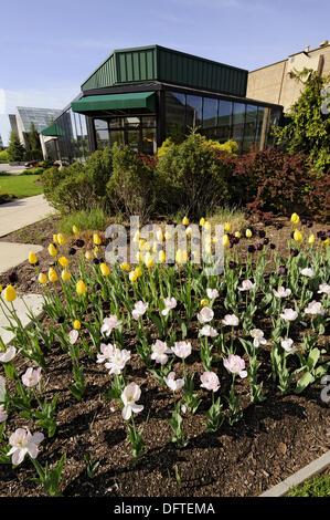 ... Foellinger Freimann Botanical Conservatory Of Fort Wayne Indiana    Stock Photo