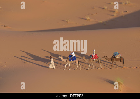 Tourists riding on camels in the dunes, Great Sand Sea, Weiße Wüste, Farafra, Gouvernement al-Wadi al-dschadid, - Stock Photo
