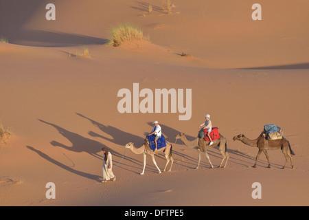 Tourists riding on camels in the dunes, Great Sand Sea, Sahara, Merzouga, Meknès-Tafilalet region, Morocco - Stock Photo