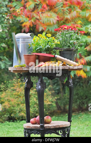 ... Fall Flower Pots And Gardening Accessories Placed On A Table In The  Garden   Stock Photo