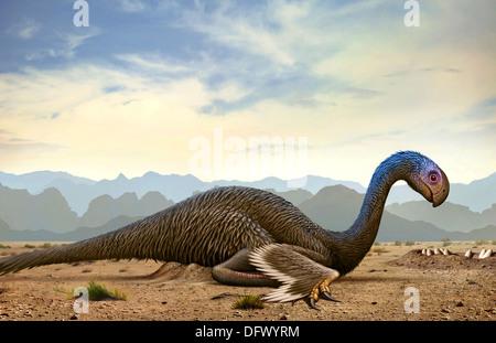 Gigantoraptor, a genus of giant oviraptorosaurian theropod dinosaur from the Cretaceous Period. - Stock Photo