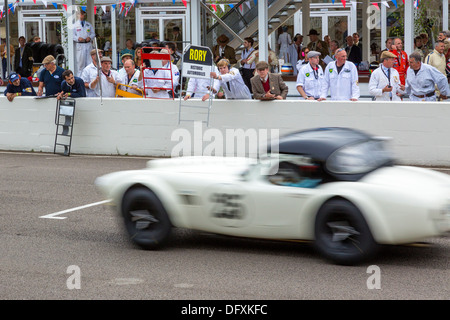 1962 AC Cobra passes the pits at the 2013 Goodwood Revival, Sussex, UK. RAC TT Celebration race. - Stock Photo