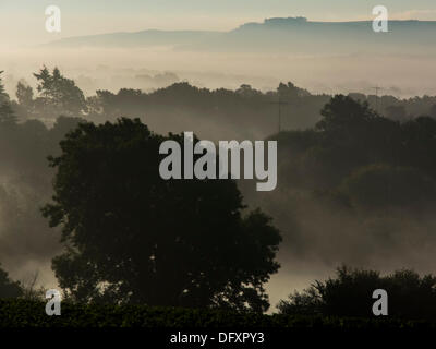 Misty morings over Sussex have been a feature of this week. The view looking towards the South Downs over a champagne - Stock Photo