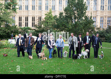 London, UK. Thursday 10th October 2013. MPs and their dogs competing in the Westminster Dog of the Year competition - Stock Photo