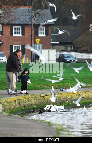 A man and a child feeding the birds UK - Stock Photo
