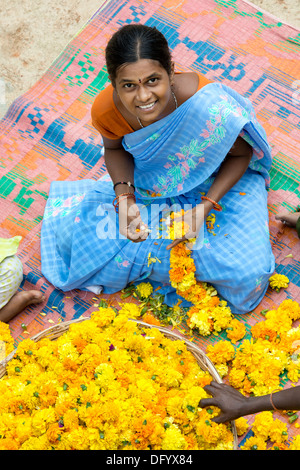 Rural Indian village woman sitting round a basket of marigold flowers making flower garlands. Andhra Pradesh, India - Stock Photo