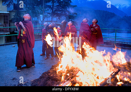 Young monks, ritual to burning evil at Losar new year, in Namgyal Monastery,in Tsuglagkhang complex. McLeod Ganj, - Stock Photo