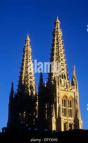 Detail of Gothic cathedral. Burgos. Spain. Camino de Santiago