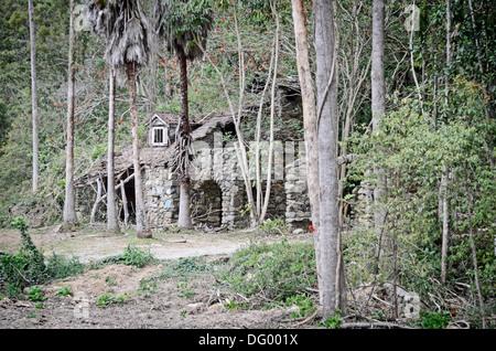 Derelict stone house near Mudgeeraba   QLD Australia. - Stock Photo