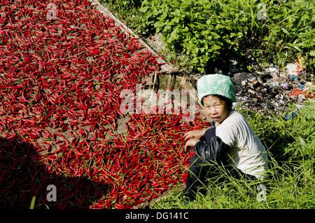 The amazing rice terraces of LongJi in Guangxi, China - Stock Photo