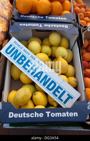 Untreated Lemons at a marketstall, Hanover, Lower Saxony, Germany, Europe, - Stock Photo