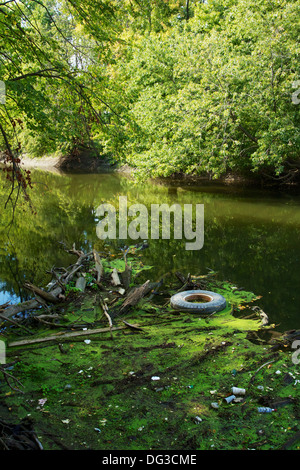 Floating debris on the Des Plaines River. Cook County, Illinois - Stock Photo