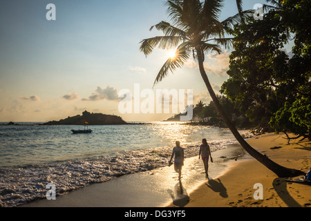 Mirissa Beach, couple taking a romantic walk under a palm tree at sunset, South Coast, Sri Lanka, Asia - Stock Photo
