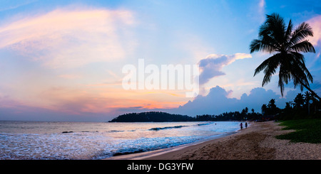 Mirissa Beach, palm tree at sunset on the Indian Ocean, South Coast, Southern Province, Sri Lanka, Asia - Stock Photo