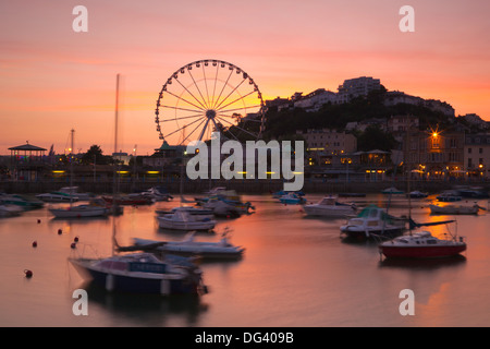 Torquay Harbour, Devon, England, United Kingdom, Europe - Stock Photo