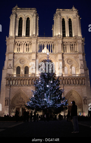 Christmas tree, Notre-Dame de Paris Cathedral, Paris, France, Europe - Stock Photo
