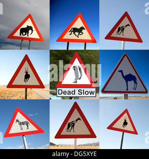 Composition of nine animal crossing signs photographed on the road of Namibia - Stock Photo