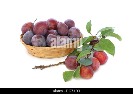 Plums in a wicker basket with a branch isolated on white background - Stock Photo