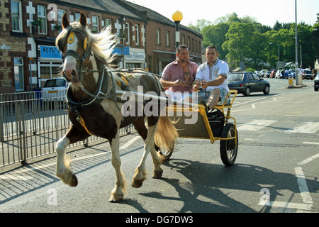 Horse and trap at Appleby horse fair 2013 at Appleby -in-Westmorland Cumbria England - Stock Photo