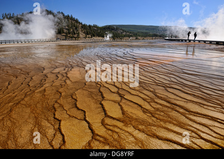 Thermophyllic algae colonies near Grand Prismatic Spring in the Midway Geyser Basin Yellowstone National Park, Wyoming, - Stock Photo