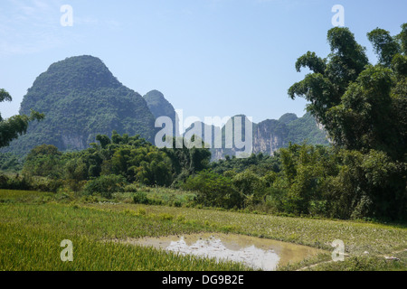 China, Yangshuo town rice paddies - Stock Photo