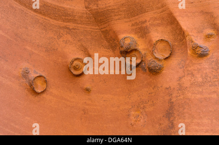 Moqui marbles in navajo sandstone, Zebra slot canyon, Grand Staircase Escalante National Monument, Utah, USA - Stock Photo