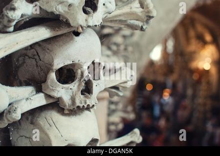 Human skulls and bones with soft shadows - Stock Photo