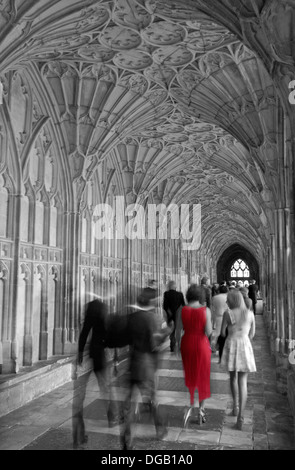 Woman in the Red dress.  A wedding party moving through the Cloisters in Gloucester Cathedral, Gloucester, Glous, - Stock Photo