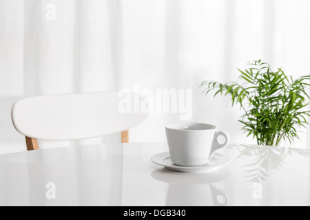 White cup on the kitchen table, with green plant in the background. - Stock Photo