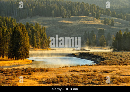 Morning mists on the Yellowstone River near the Mud Volcano Yellowstone NP Wyoming USA - Stock Photo
