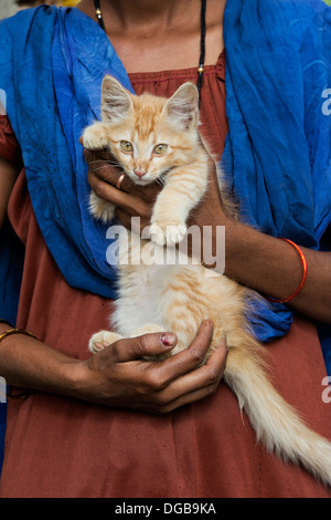 Indian woman holding a ginger cat / kitten. Andhra Pradesh, India - Stock Photo