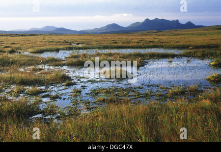 Near Von Tongue by Lairg, Ben Loyal 765m. Sutherland, Northern Highlands. Scotland. UK. - Stock Photo