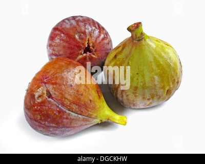 Fig fruit. Ficus carica L. Moraceae. Common Names: Fig (English), Higo (Spanish), Figue (French), Feige (German), - Stock Photo