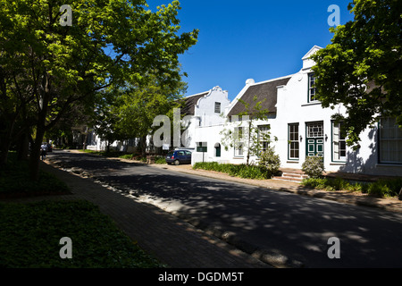 Cape Dutch style buildings on a leafy tree lined street in the Town of Stellenbosch South Africa - Stock Photo