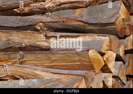 Holzstapel - stack of wood 44 - Stock Photo