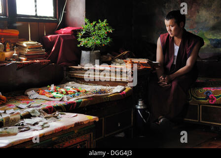 Young Tibetan monk in the Yumbulagang Fortress, first and oldest fortress of Tibet, Yarlung Valley, Tsetang, Tibet, - Stock Photo