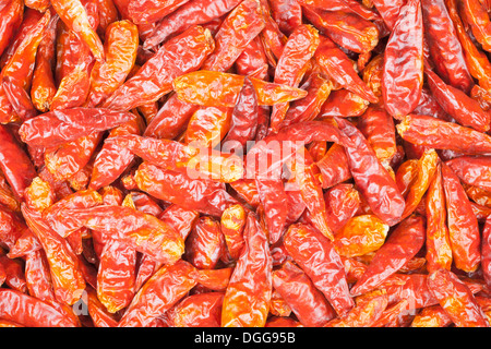 Dried red chili peppers - Stock Photo