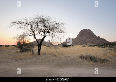 Savannah landscape with rock formations great spitzkoppe for Landscaping rocks savannah ga