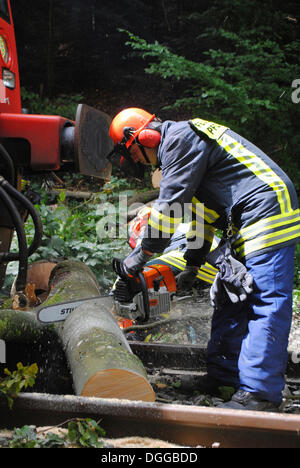 Removal of a fallen tree blocking the rail traffic between Dreizelgenberg Tunnel and Dillweissenstein railway station - Stock Photo